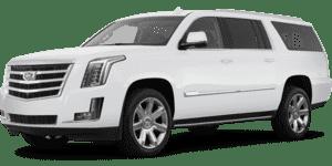 2020 Cadillac Escalade in Bay Shore, NY
