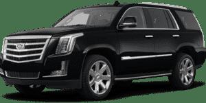 2020 Cadillac Escalade in Thousand Oaks, CA