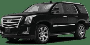 2017 Cadillac Escalade in Knoxville, TN